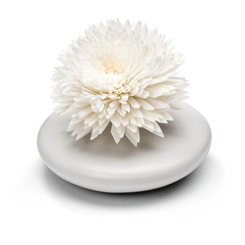 Duftblume in Design-Vase